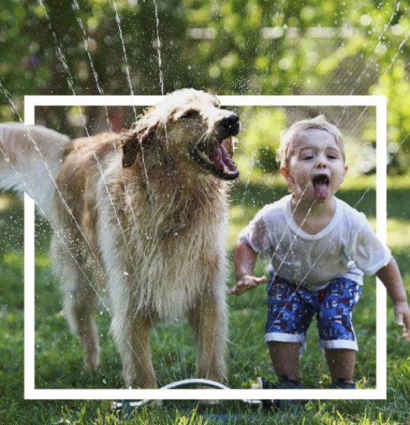 Beneficios de que los niños crezcan con una mascota